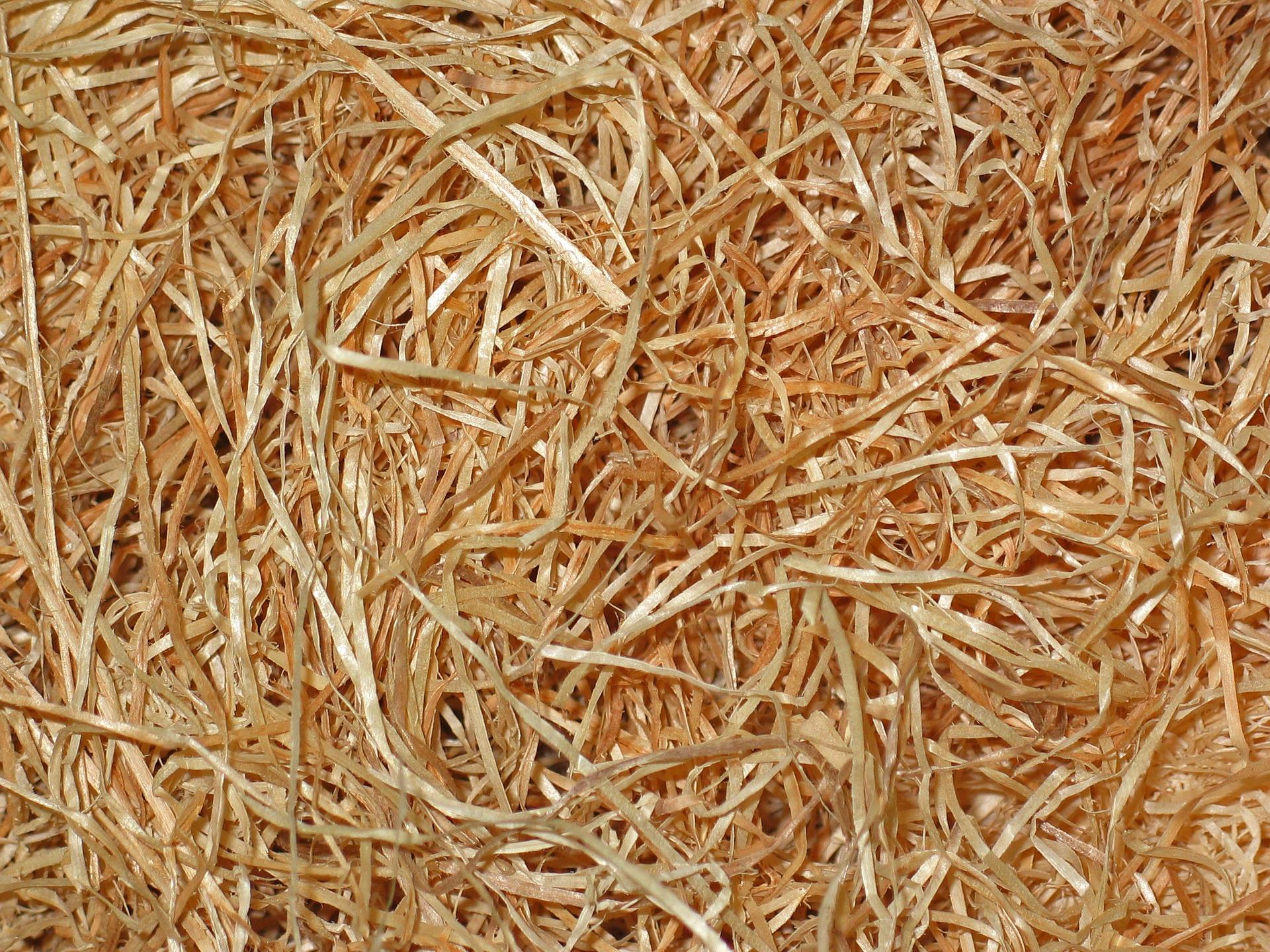 Isolation : laine de bois